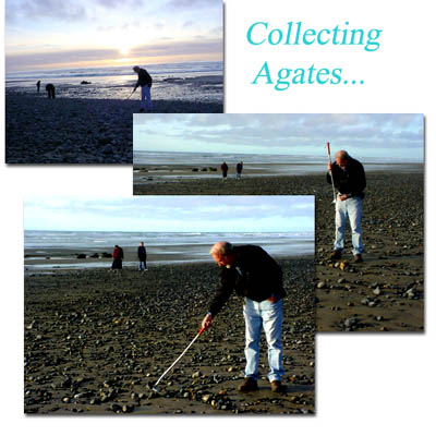 Richard the co-author of AGATES OF THE OREGON COAST beach combing with the NEW shell & gem scoop!